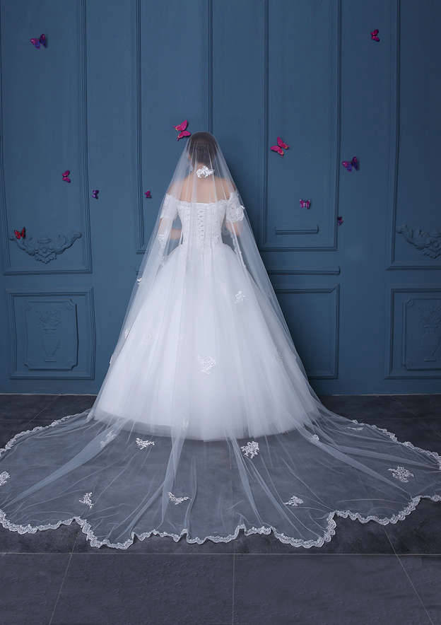 One-tier Lace Applique Edge Tulle Cathedral Bridal Veils With Applique